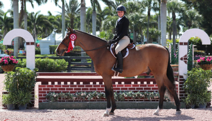 21/02/2018 ; Wellington FL ; Winter Equestrian Festival - Week 7 ; 6157, WANDERLUST, MINDY MOXEY ; ushja national hunter derby ; presentation ; Sportfot